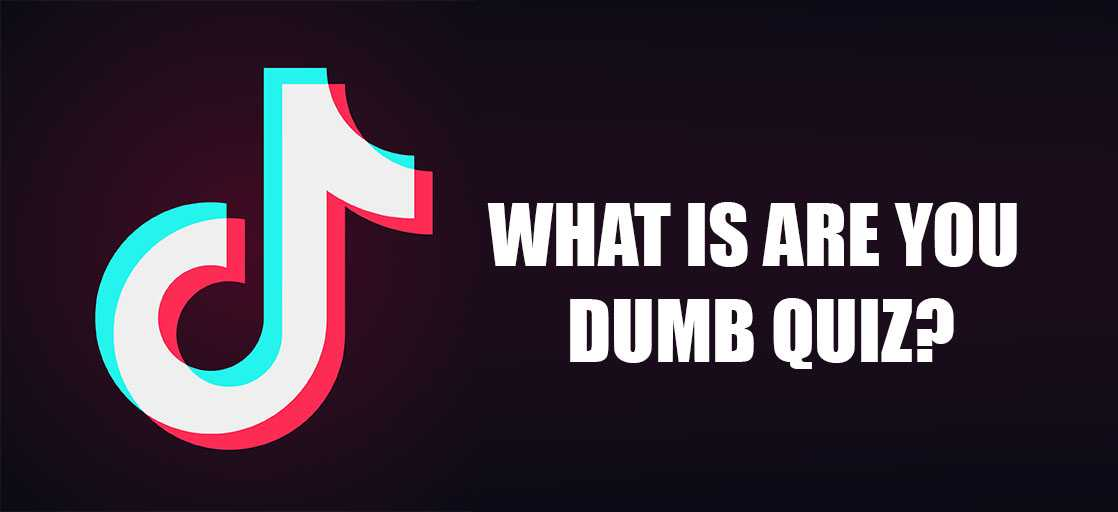 What Is Are You Dumb Quiz Tg Time